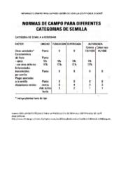 Normas de Campo Café