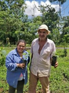 Certificación de Vivero de Paulownia sp.Finca de la Sra. María Fernanda Artavia, ubicada en la Palmera de San Carlos, provincia de Alajuela.